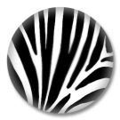 Animal Print Button Badge Zebrafellmuster