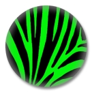 Animal Print Button Badge grünes Zebrafellmuster